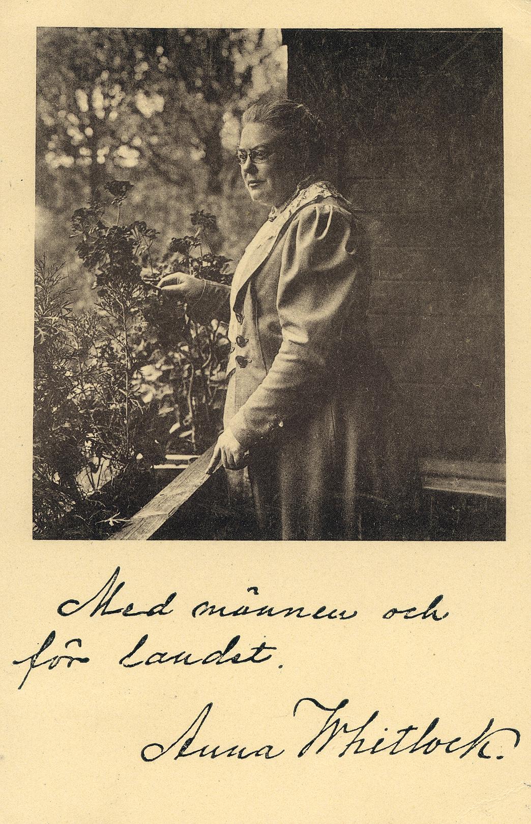 Rösträttsvykort (KvinnSam, Göteborgs universitetsbibliotek)