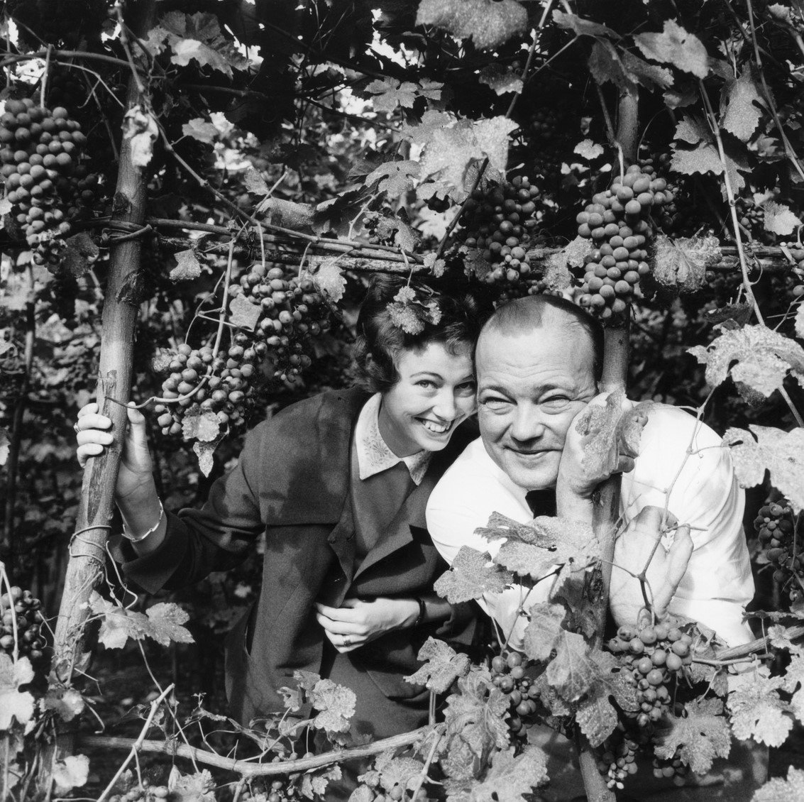 Ulla and Stieg Trenter among vines, circa 1965. Photo: Studio Gullers (K W Gullers arkiv, Nordiska museet, NMA.0064135)